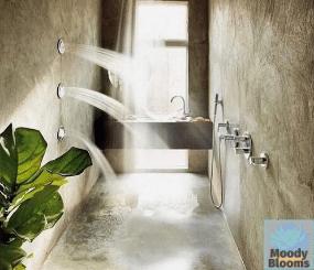 Fiddle leaf fig shower